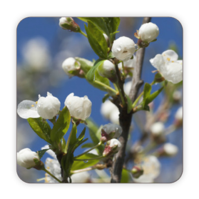 Костер (подставка под кружку) Весенний цвет