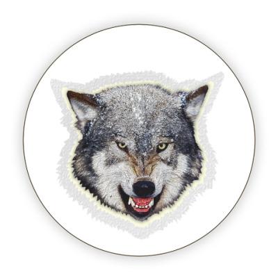 Костер (подставка под кружку) Волк