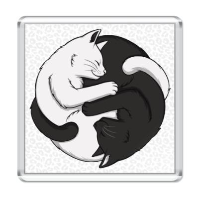 Магнит Черный и белый кот инь-ян