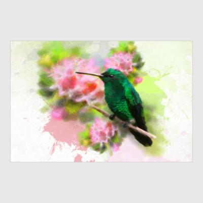 Постер Колибри в цветах