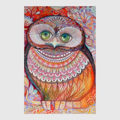 Постер Медовая сова