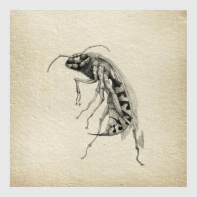 Постер Wasp