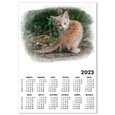 Календарь Милый хищник