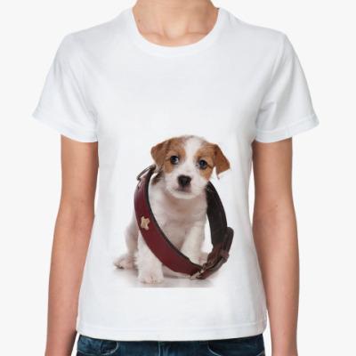 Классическая футболка Щенки,щенята и собаки