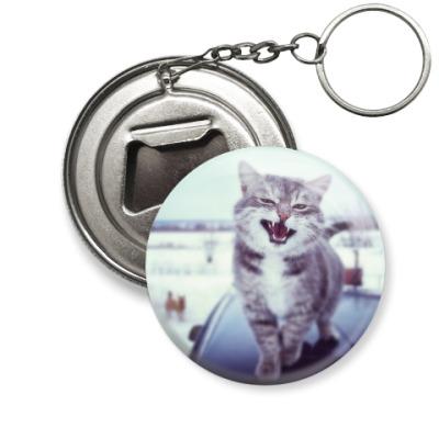 Брелок-открывашка Смазливый кот.
