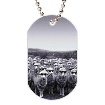 Жетон dog-tag Овечки в очках