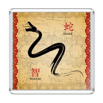 Магнит Змея