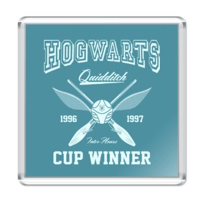 Магнит Hogwarts Quidditch Cup Winner