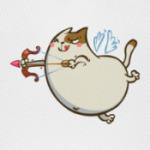 Амуркот — Пятничный Котик №42