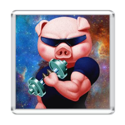 Магнит IRON PIG