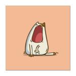 Зевокот — Пятничный Котик №28