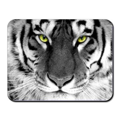 Коврик для мыши Белый тигр