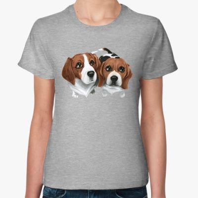 Женская футболка Beagles